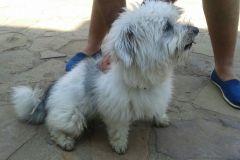 Aniworld-Veterinary-Clinic-005